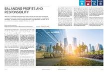Balancing Profits and Sustainability